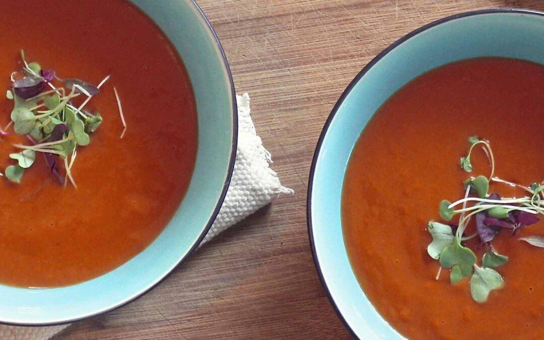 Ossenstaartsoep met tomaat